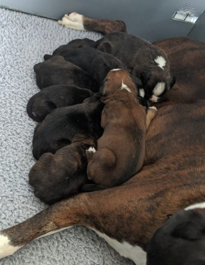 Time at the Milk Bar!